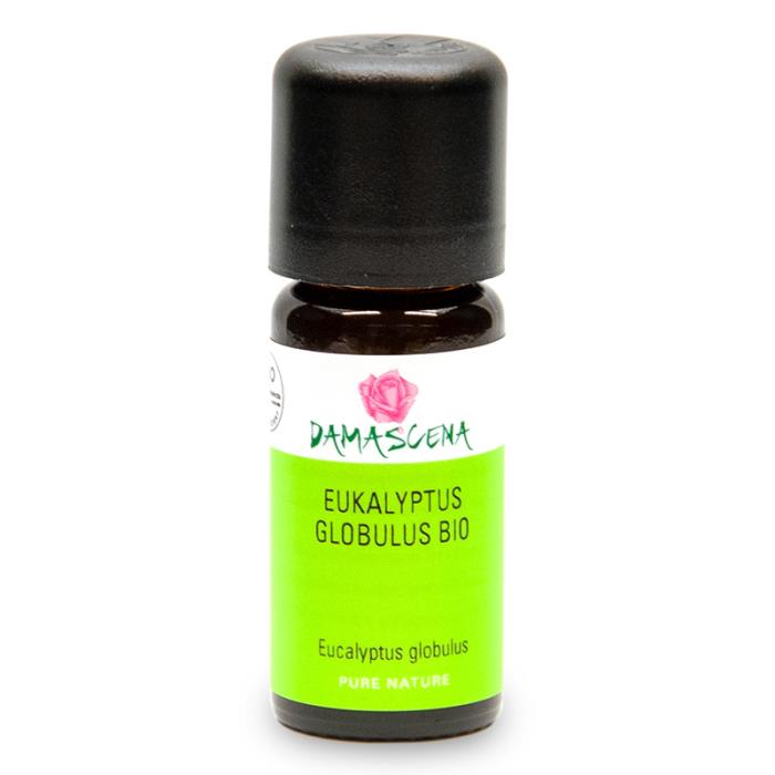 Eukalyptus Globulus BIO - ätherisches Öl
