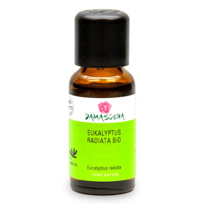 Eukalyptus Radiata BIO - ätherisches Öl