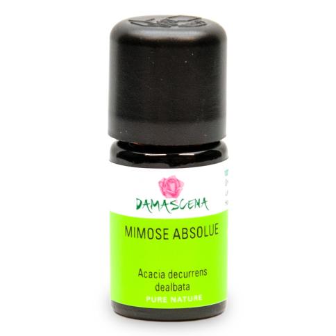 Mimose Absolue 50% - ätherisches Öl