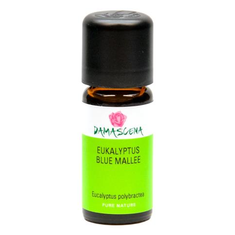 Eukalyptus Blue Mallee - ätherisches Öl